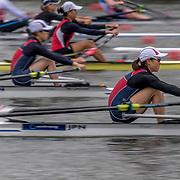 Japan at WCII 2017
