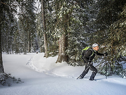 Man hiking with snowshoes in the Black forest, Baden-Wuerttemberg, Germany