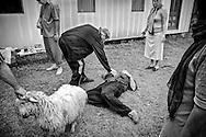 Ilia, a Georgian faith healer, removes a curse off a local family. Gali. 2008