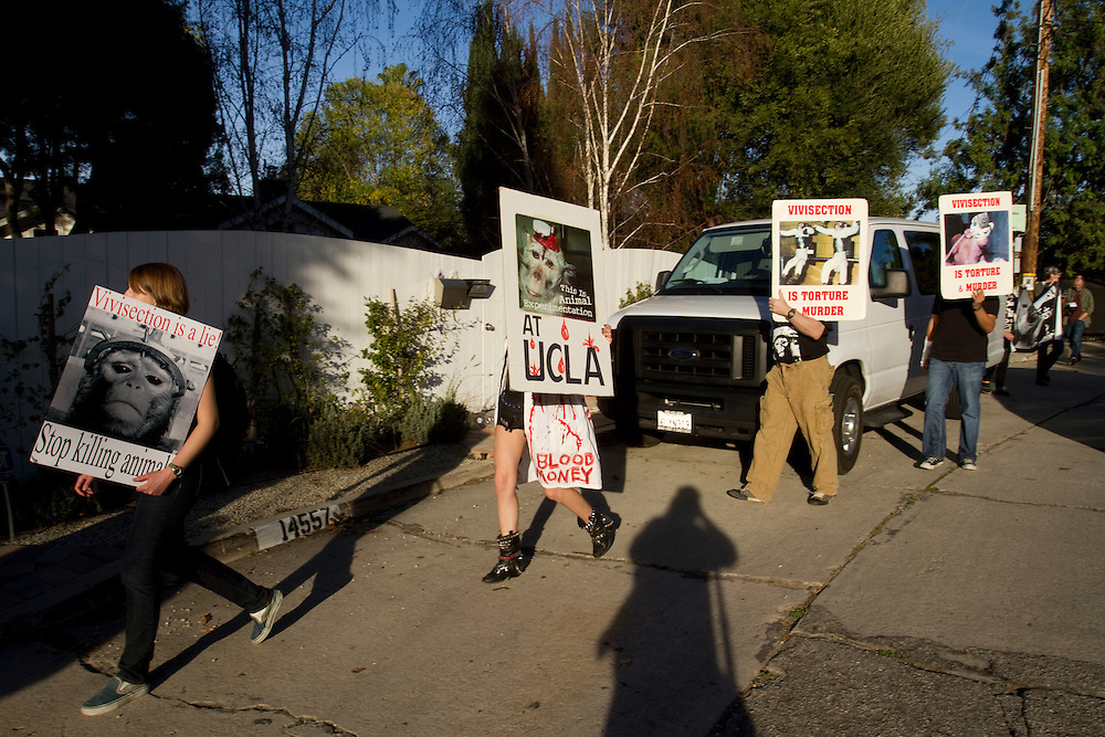 Animal rights activists protest near the home of UCLA Professor David Jentsch. A municipal code keeps the protestors 150 feet away from the actual home but the activists chant slogans to the professors neighbors.
