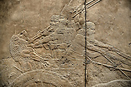 Assyrian relief sculpture panel of Ashurnasirpal stabbing his sword into a lions neck during a lion hunting.  From Nineveh  North Palace, Iraq,  668-627 B.C.  British Museum Assyrian  Archaeological exhibit no ME 124850 .<br /> <br /> If you prefer to buy from our ALAMY PHOTO LIBRARY  Collection visit : https://www.alamy.com/portfolio/paul-williams-funkystock/ancient-assyria-antiquities.html  Refine search by adding background colour, place, subject, museum etc into the LOWER SEARCH WITHIN GALLERY box to <br /> <br /> Visit our ANCIENT ASSYRIAN PHOTO COLLECTIONS for more photos to download or buy as wall art prints https://funkystock.photoshelter.com/gallery-collection/Ancient-Assyrian-Art-Artefacts-Antiquities-Historic-Sites-Pictures-Images-of/C0000cjRqQyJjLag