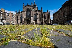 Edinburgh, Scotland, UK. 4 June 2020.  As Covid-19 lockdown relaxation continues in Scotland very few shops and businesses are open. Streets remain quiet and pubs and, with a few exceptions, bars and pubs are closed. Pictured; Nature is returning to the city centre, Weeds and wild flowers are growing amongst the cobbles of Parliament Square in the shadow of St Giles Cathedral due to the lack of people in the city. Iain Masterton/Alamy Live News