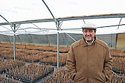 Julio Viola, president and owner and young pinot noir vines in the plant school nursery Bodega Del Fin Del Mundo - The End of the World - Neuquen, Patagonia, Argentina, South America