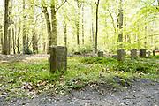 APELDOORN, 09-06-2021 , Kroondomein Het Loo<br /> <br /> Kroondomein Het Loo is een landgoed op de Veluwe, in de Nederlandse provincie Gelderland. Het is het grootste landgoed van Nederland en omvat ongeveer 10.400 hectare.<br /> <br /> Op de foto:  Paardenkerkhof