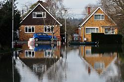 Flooding, Purley-on-Thames, Berkshire UK Jan 2014