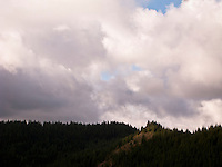 A break in the cumulus cloud cover lights a spot on a ridge in the Tahoma State Forest, Cascade Range, Washington state.