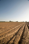A ploughed field before sowing