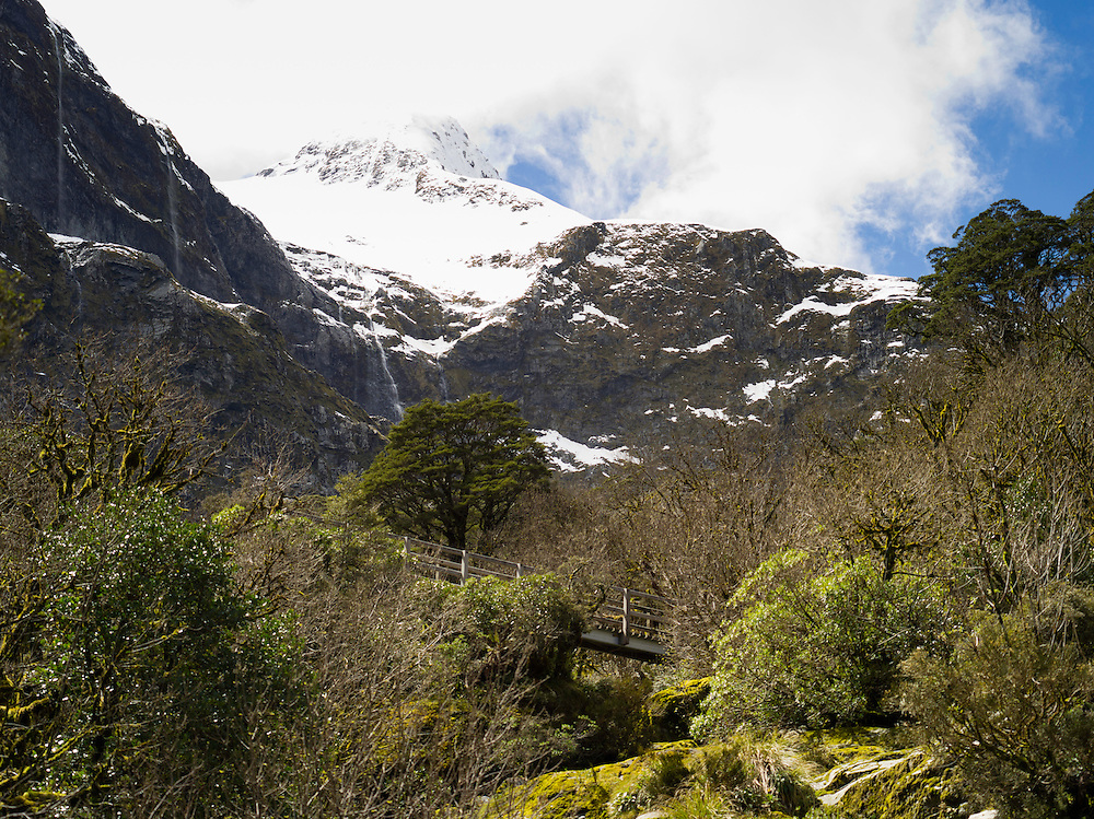 View looking up Moraine Creek to Mount Wilmur along the Milford Track, Fiordland National Park, New Zealand