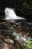 Nature photography of this easily accessible waterfall off Dry Run Road in Worlds End State Park in Pennsylvania.