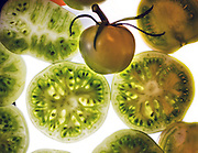 """At summer's end, what to do with all those """"leftover"""" green tomatoes? (Mike Siegel / The Seattle Times)"""