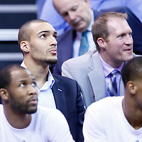 09 December 2015: Utah Jazz center Rudy Gobert (27) is seen on the bench during the Utah Jazz 106-85 victory over the New York Knicks, at the Vivint Smart Home Arena, Salt Lake City, Utah, USA.