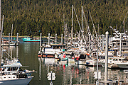 Public marina and port in the tiny village of Petersburg on Mitkof Island along the Wrangell Narrows in Frederick Sound with the Alaska Coast Range of mountains behind on Mitkof Island, Alaska. Petersburg settled by Norwegian immigrant Peter Buschmann is known as Little Norway due to the high percentage of people of Scandinavian origin.