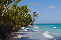 , French Polynesia - 10/26/2006 - Fakarawa, Tuamotu Archipelago, French Polynesia.(Photo by Sharpshooters/VWPics) *** Please Use Credit from Credit Field *** *** Please Use Credit from Credit Field ***