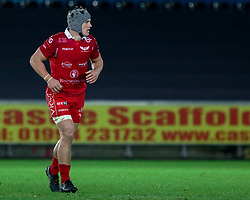 Jonathan Davies of Scarlets<br /> <br /> Photographer Simon King/Replay Images<br /> <br /> Guinness PRO14 Round 11 - Ospreys v Scarlets - Saturday 22nd December 2018 - Liberty Stadium - Swansea<br /> <br /> World Copyright © Replay Images . All rights reserved. info@replayimages.co.uk - http://replayimages.co.uk