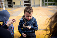 A young boy plays with a snake after the procession, in the village kids are not afraid of snakes. Cocullo, Italy. May 1st 2017. Federico Scoppa