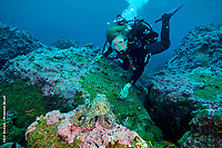 Sylvia Earle, Mission Blue, Galpagos Hope Spot. Dr. Sylvia Earle explores a reef with an octopus.