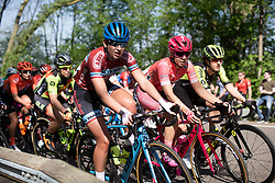 Jip van den Bos (NED) of Boels-Dolmans Cycling Team rides at the front of the main peloton during the Amstel Gold Race - Ladies Edition - a 126.8 km road race, between Maastricht and Valkenburg on April 21, 2019, in Limburg, Netherlands. (Photo by Balint Hamvas/Velofocus.com)