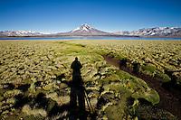 VOLCAN MAIPO Y SOMBRA DE MARCO GUOLI FOTOGRAFIANDO ENTRE YARETAS (Azorella compacta), RESERVA NATURAL LAGUNA DEL DIAMANTE, PROVINCIA DE MENDOZA, ARGENTINA