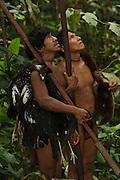 Huaorani Indians - Tage Kaiga & Oña Yate out hunting with their blowguns. They hunted a woolly monkey, 2 guans and 2 trumpeters. Gabaro Community. Yasuni National Park.<br /> Amazon rainforest, ECUADOR.  South America<br /> This Indian tribe were basically uncontacted until 1956 when missionaries from the Summer Institute of Linguistics made contact with them. However there are still some groups from the tribe that remain uncontacted.  They are known as the Tagaeri and Taromanani. Traditionally these Indians were very hostile and killed many people who tried to enter into their territory. Their territory is in the Yasuni National Park which is now also being exploited for oil.