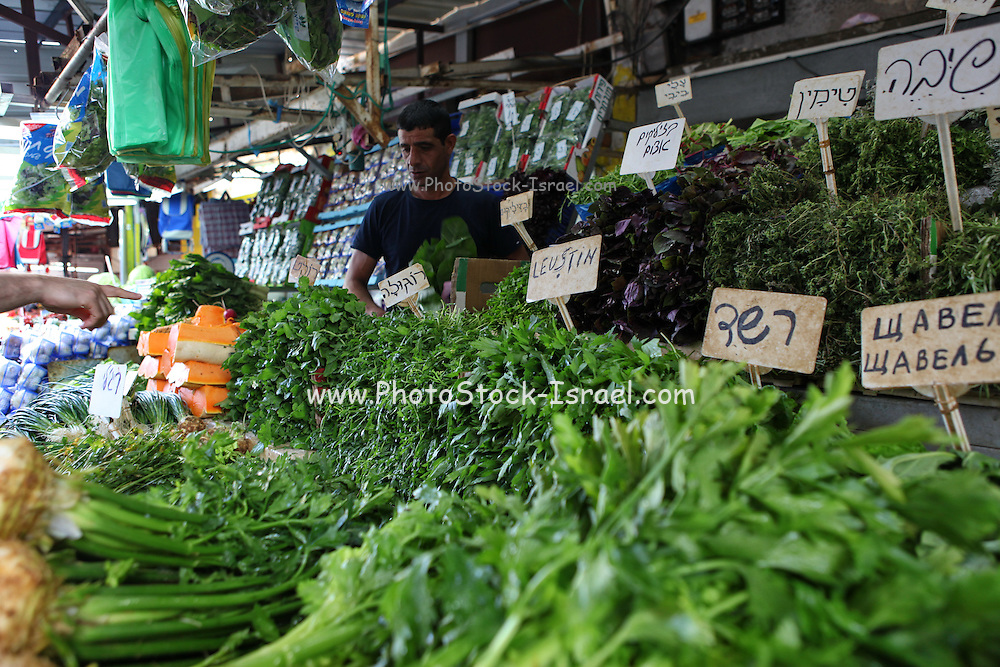 Stall selling fresh herbs and greens Photographed at the Carmel Market, Tel Aviv, Israel