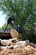 When it comes to removal from a trailer, boulders pose a challenge. Nichole rolls another one onto the growing pile in my driveway.