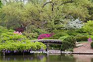 65021-03607 Bridge in Japanese Garden in spring, MO Botanical Gardens, St Louis, MO