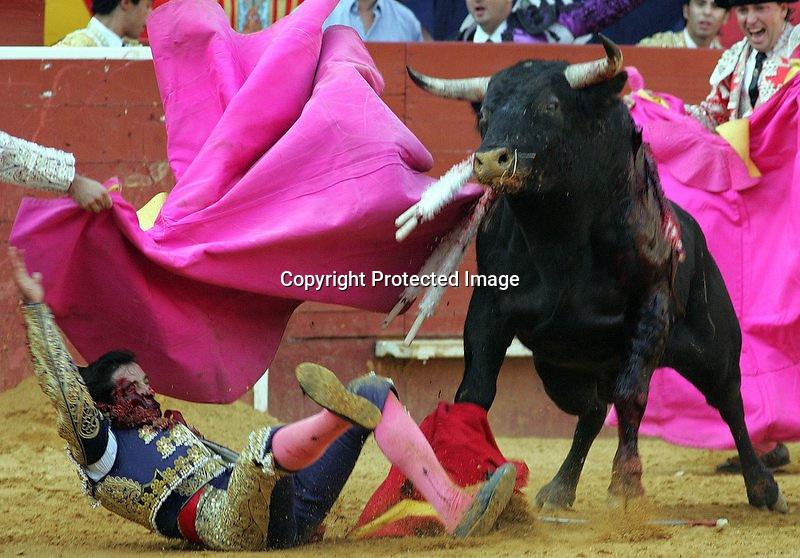 V. 07. Valencia, 19/07/2004. El novillero alicantino, Roque Garijo, cae tras ser empitonado por su primer toro en la primera novillada con picadores de la Feria de Julio de Valencia. EFE/Kai Försterling.