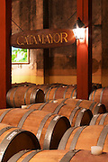 Barrels for storing the wine in wood.. A sign saying Catamayor. Bodega Castillo Viejo Winery, Las Piedras, Canelones, Uruguay, South America