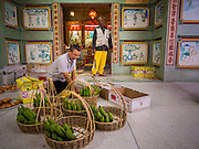"25 JANUARY 2014 - BANG LUANG, NAKHON PATHOM, THAILAND: Men prepare offerings at a shrine in Bang Luang before a Chinese Opera. Chinese opera was once very popular in Thailand, where it is called ""Ngiew."" It is usually performed in the Teochew language. Millions of Chinese emigrated to Thailand (then Siam) in the 18th and 19th centuries and brought their cultural practices with them. Recently the popularity of ngiew has faded as people turn to performances of opera on DVD or movies. There are still as many 30 Chinese opera troupes left in Bangkok and its environs. They are especially busy during Chinese New Year when travel from Chinese temple to Chinese temple performing on stages they put up in streets near the temple, sometimes sleeping on hammocks they sling under their stage.     PHOTO BY JACK KURTZ"