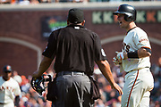 San Francisco Giants catcher Buster Posey (28) yells at Philadelphia Phillies relief pitcher Hector Neris (50) after being hit by the ball while at bat at AT&T Park in San Francisco, California, on August 20, 2017. (Stan Olszewski/Special to S.F. Examiner)