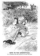 Note to the superstitious. It is considered lucky for a black cat to cross your path.