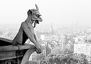 Gargoyle looking out over Paris from top of Notre-Dame Cathedral