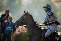 Bleekman Janou (NED) - Dasj<br /> Cross country 6 years old horses<br /> Mondial du Lion - Le Lion d'Angers 2014<br /> © Dirk Caremans<br /> 18/10/14