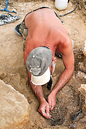 Dominique ('Doumé') Augier, from the Museum of Angoulême, excavating fossils from a Stegosaurus at the palaeontological excavations at Angeac, Charente, France (July 2016) © Rudolf Abraham