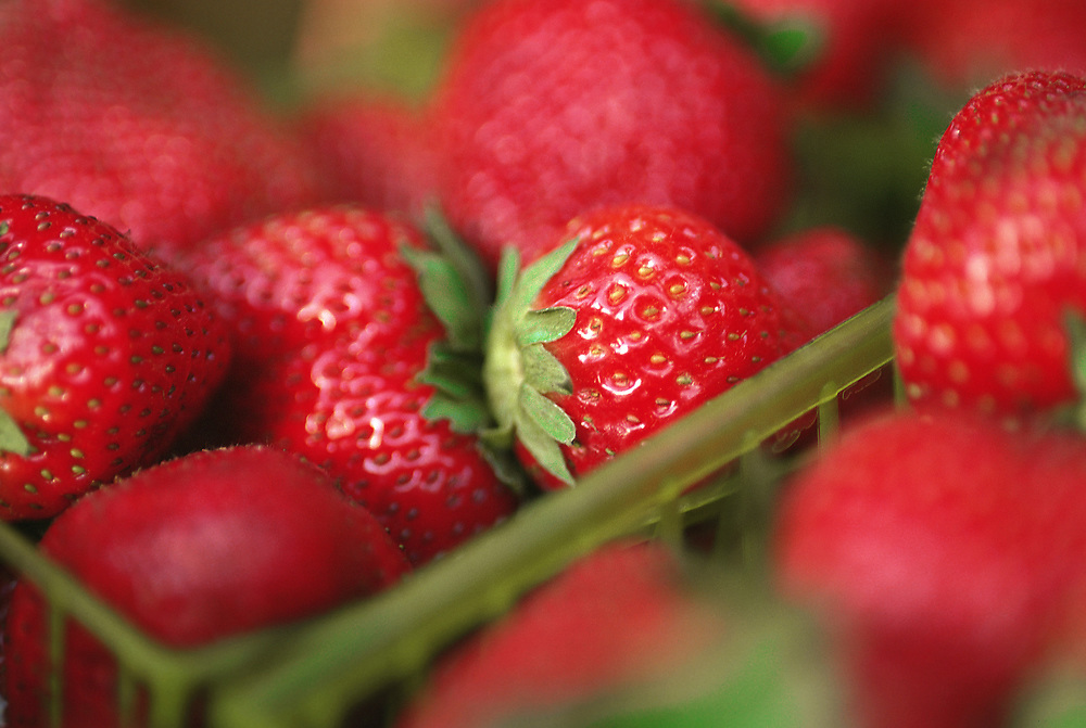 Extreme close up selective focus photograph of a couple containers of Strawberries