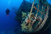 Cedar Pride : Scuttled for divers over 20 years ago - this wreck has been described as one of the most photogenic wrecks of the Red Sea. It was deliberately sunk for divers on November 16th 1985 destined to become the most famous dive site in Jordan, Aqaba