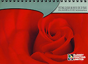 PRODUCT: Calendar (Corporate)<br /> TITLE: <br /> CLIENT: Barney Printing