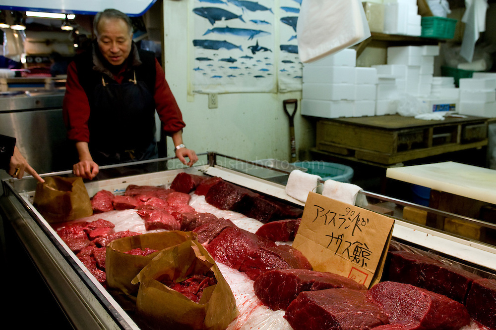 """Whale Meat Shop at Tsukiji Fish Market, Tokyo. The meat on display includes endangered fin whale meat, recently controversially imported from Iceland... the cardboard sign reads """"fin whale, Iceland"""". Tsukiji fish market is the biggest wholesale fish and seafood market in the world."""