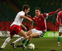 Fotball<br /> Privatlandskamp<br /> Wales v Ungarn<br /> 9. februar 2005<br /> Foto: Digitalsport<br /> NORWAY ONLY<br /> Wales' David Partridge and Hungary's Zoltan Gera battle for the ball.