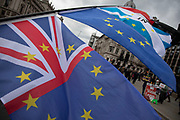 Anti Brexit, Remain demonstrator protest with his boom of flags in Westminster on the day after the 'meaningful vote' when MPs again rejected the Prime Minister's Brexit Withdrawal Agreement and before a vote on removing the possibility of a No Deal Brexit on 13th March 2019 in London, England, United Kingdom. With just over two weeks until the UK is supposed to be leaving the European Union, the final result still hangs in the balance.