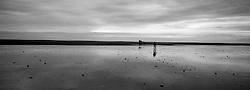 Man walking in sand beach in Oraefi, south east of Iceland - Maður á gangi í fjörunni við Kvísker í Öræfasveit
