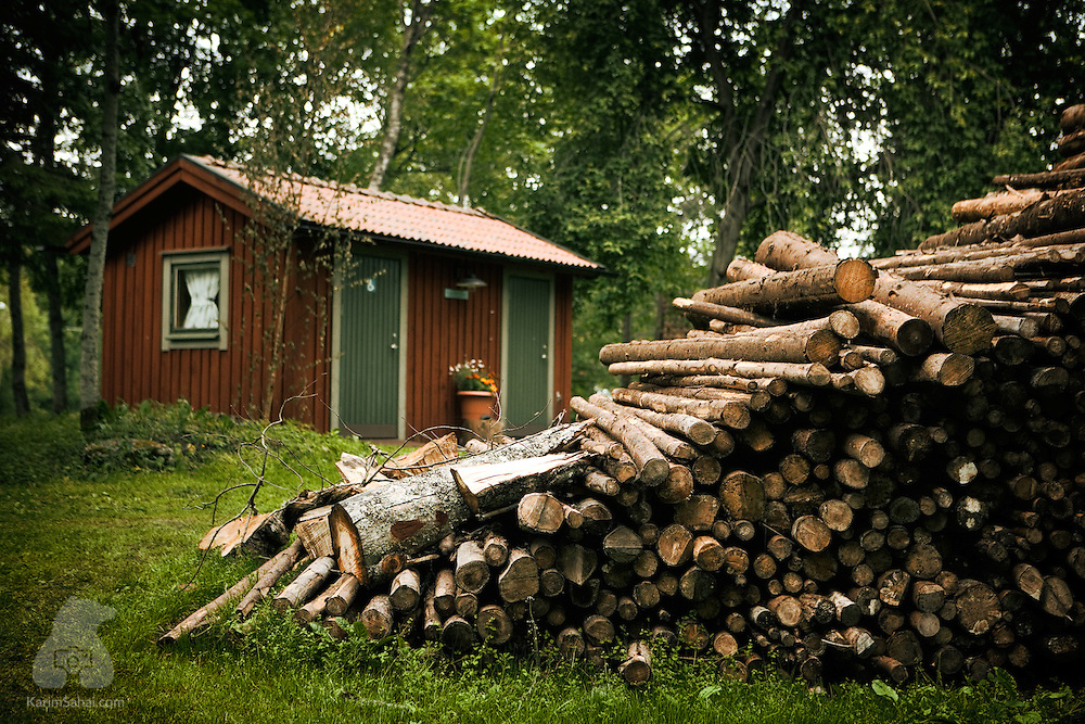 Wooden logs and a shed, Värmland, Sweden