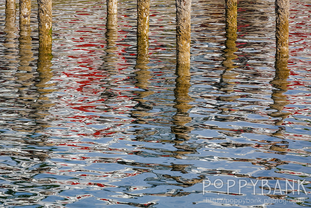Reflections dominate in this picture of old pier pilings in Langley Harbor on Whidbey Island, Washington