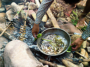 Local boatman/fisherman, Sengkham cooks fish over an open fire, which he has just caught by electric fishing in a small stream which flows into the Nam Ou river, Phongsaly province, Lao PDR. The Nam Ou river connects small riverside villages and provides the rural population with food for fishing. But this river and others like it, that are the lifeline of rural communities and local economies are being blocked, diverted and decimated by dams. The Lao government hopes to transform the country into 'the battery of Southeast Asia' by exporting the power to Thailand and Vietnam.