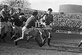 Rugby and Horse Racing 1970's