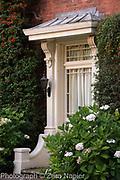 Hydrangea by the front door - September