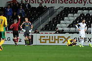 Swansea city keeper Gerhard Tremmel is booked for a late challenge which resulted in a penalty being awarded.  UEFA Europa league match, Swansea city v FC Kuban Krasnodar at the Liberty Stadium in Swansea, South Wales on Thursday 24th October 2013. pic by Andrew Orchard, Andrew Orchard sports photography,