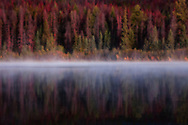 Layer of mist romances Patricia Lake with sweet nothings and sensual caress. Reflection doubles the pleasure.