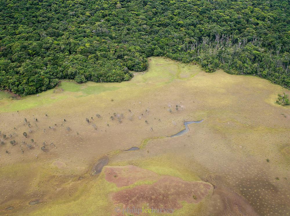 A river basin meets the dense jungle of Canaima National Park, Venezuela