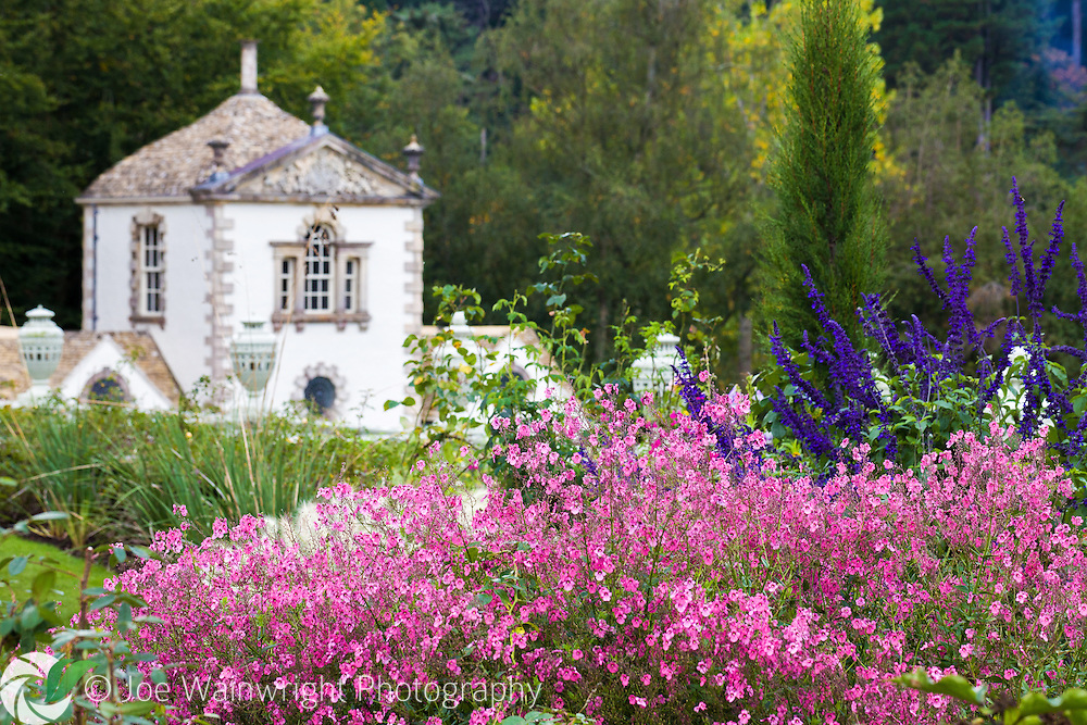 A glimpse of the Pin Mill at Bodnant Gardens, Conwy, North Wales, behind a cloud of pink diascia.  Photographed in October. This image is available for sale for editorial purposes, please contact me for more information.